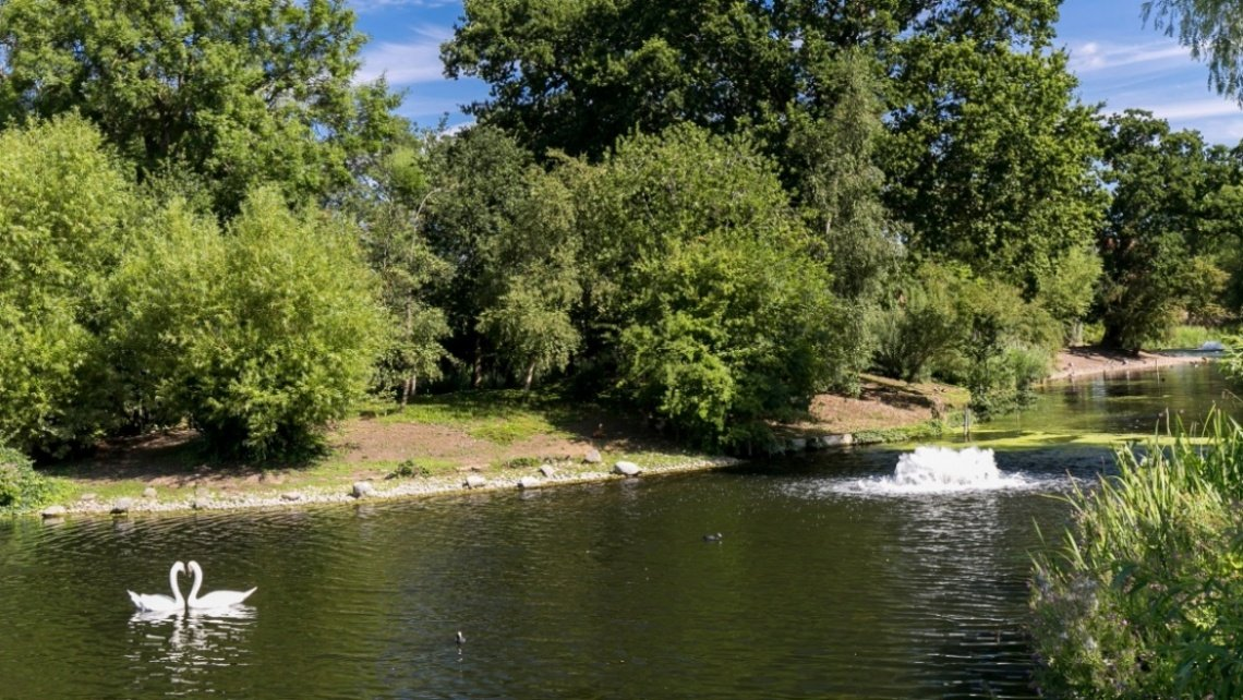 Regent's Park, London, Royal Park, Lifestyle, Area Guide